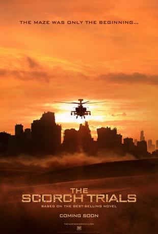 Le Labyrinthe 2 : La Terre brûlée (2015)