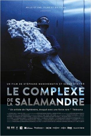 Le complexe de la salamandre (2015)