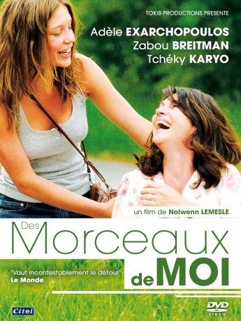 Des Morceaux de Moi (2013)
