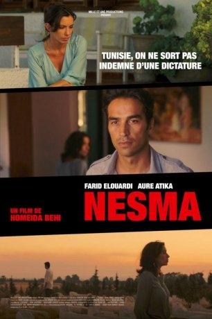 Nesma (2013)