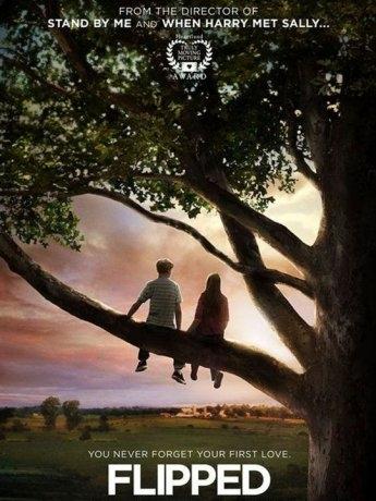 Un Coeur à l'envers (2010)