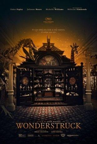 Le Musée des merveilles (2017)