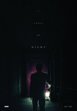 Lorsque tombe la nuit (2017)