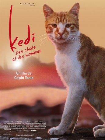 Kedi - Des chats et des hommes (2017)
