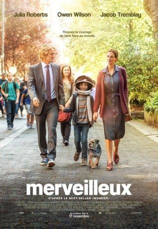Merveilleux (2017)