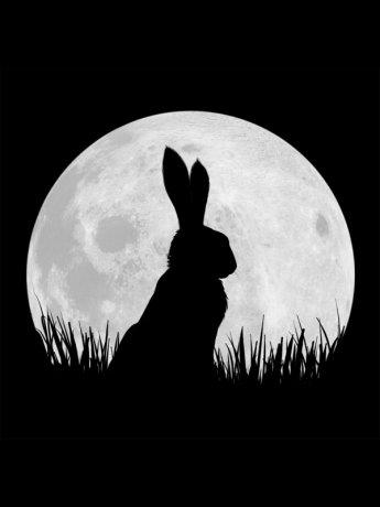 La Colline aux lapins (2018)