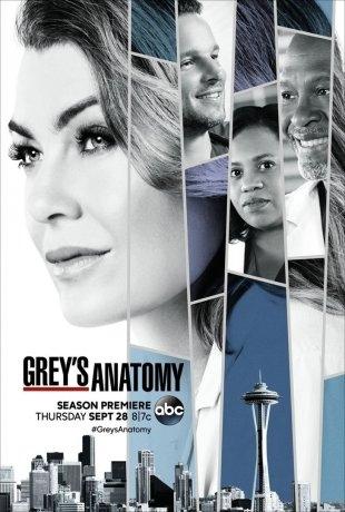 Grey's Anatomy (2019)
