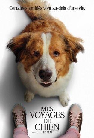 Mes voyages de chien (2019)