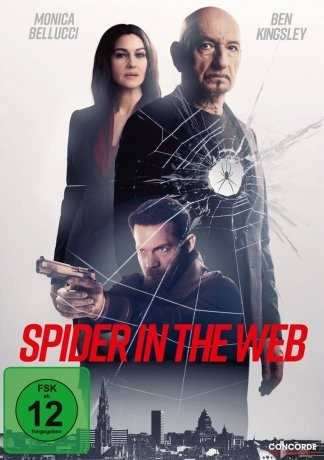 Spider in the Web (2020)