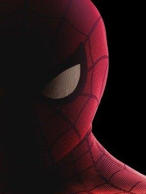 Spider-Man: Homecoming 3 (2021)